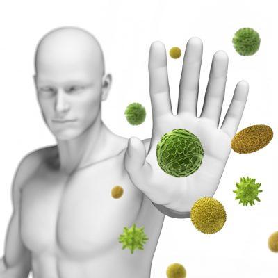 bột trái nhàu giúp tăng sức đề kháng
