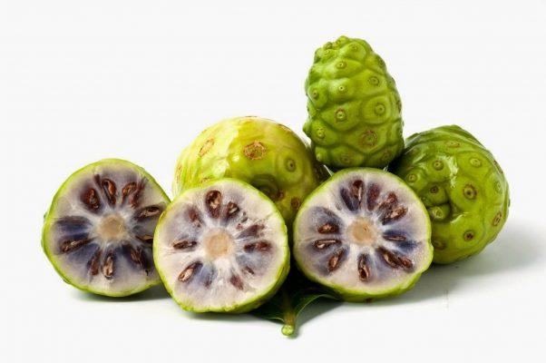 trái nhàu trị đau lưng (1)