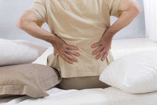 trái nhàu trị đau lưng (6)