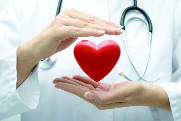 trái nhàu rừng bảo vệ tim mạch