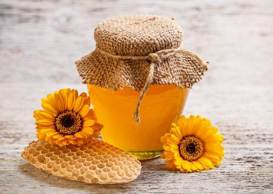 trái nhàu ngâm mật ong
